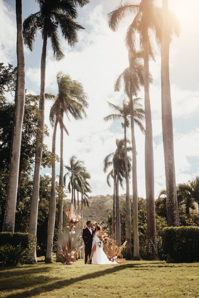 Elopement & Family Photography, bride and groom stand in the grass in the distances beneath towering Palm Trees